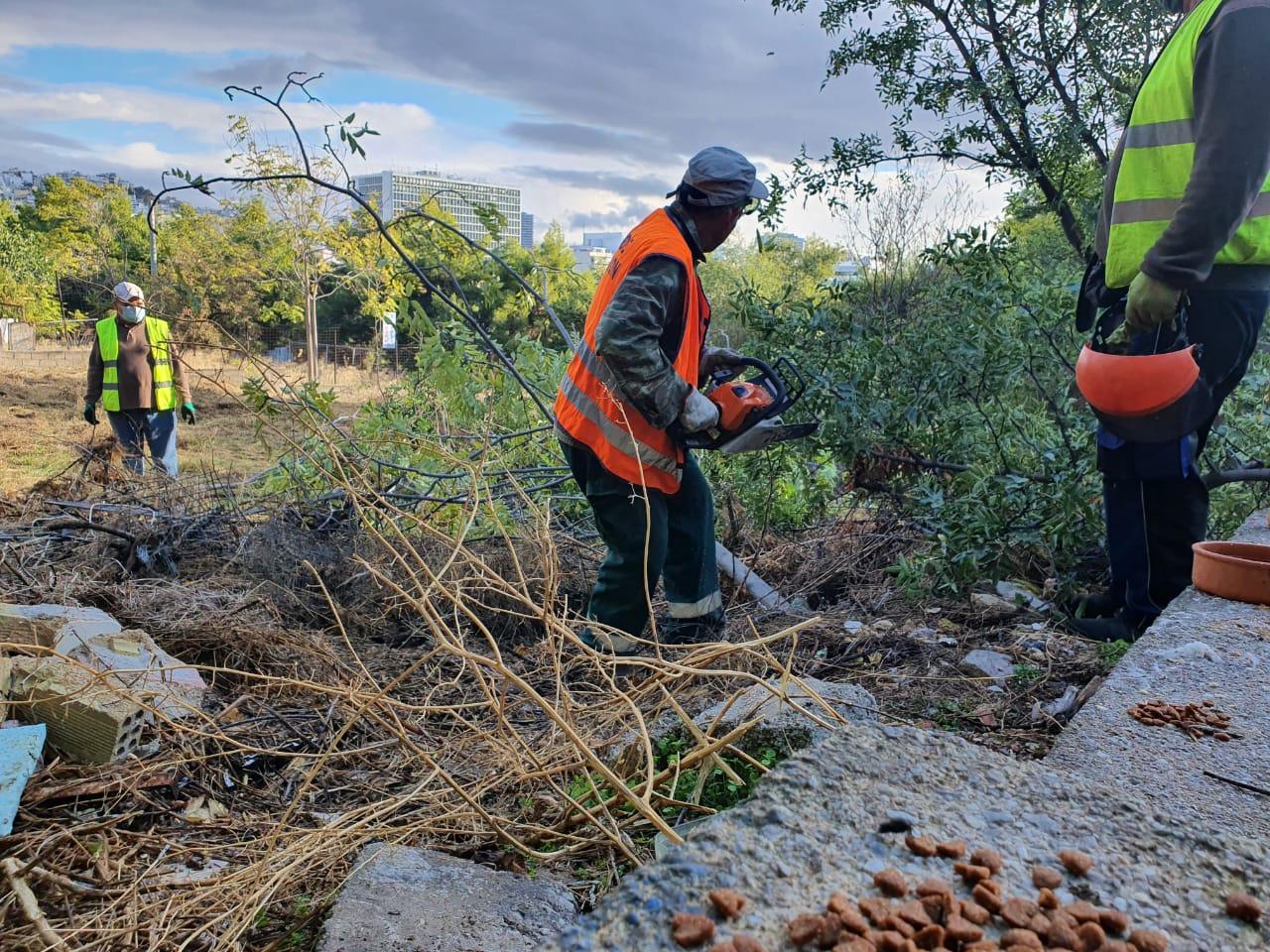 Μπακογιάννης: Τα Κουντουριώτικα επιστρέφουν στους Αθηναίους – 6 στρέμματα μεταμορφώνονται σε πνεύμονα πρασίνου