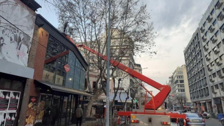 Θεσσαλονίκη: Επιχείρηση του δήμου για να σωθεί ένας πλάτανος στα Λαδάδικα